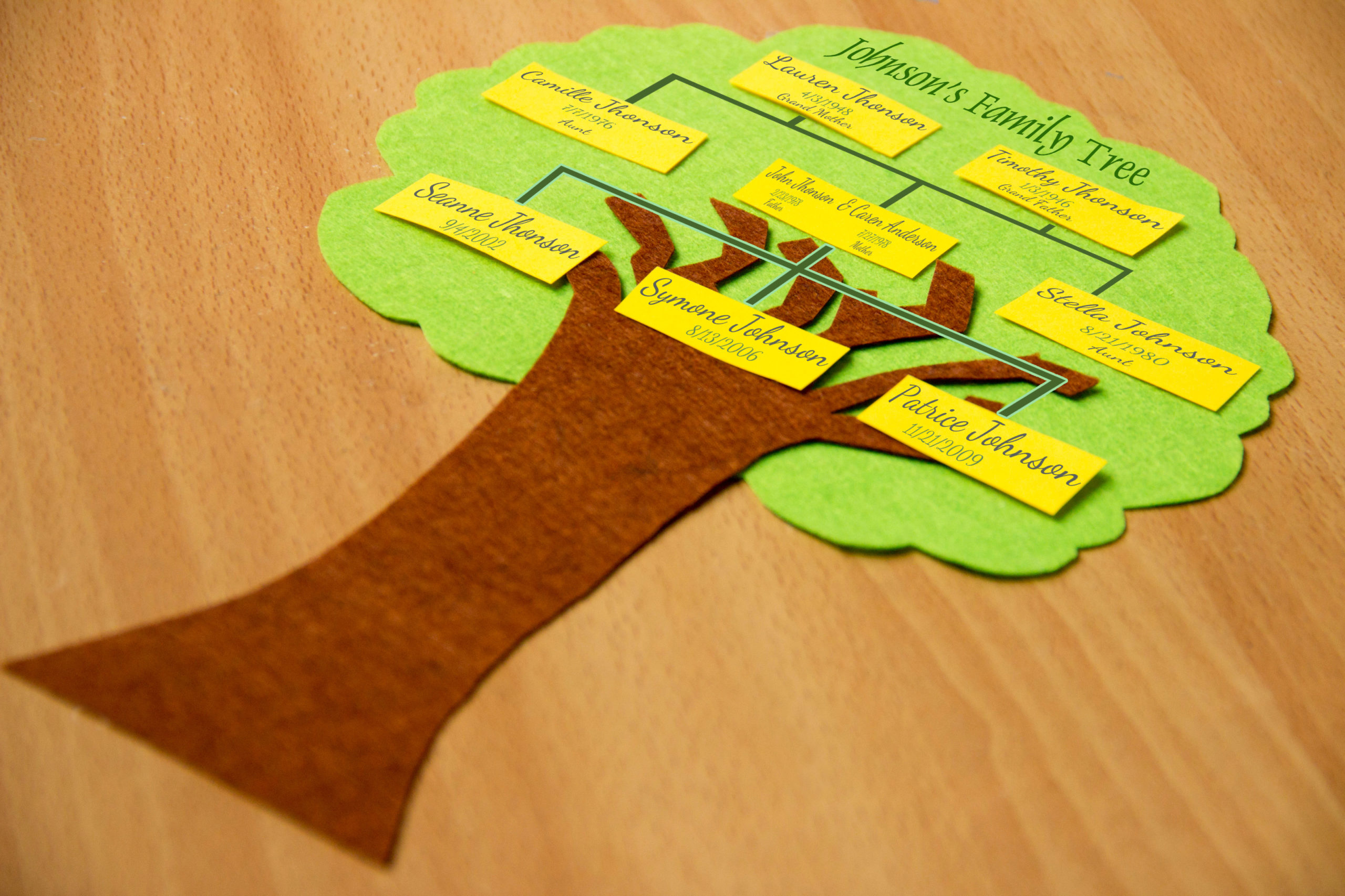 DIY family tree at home