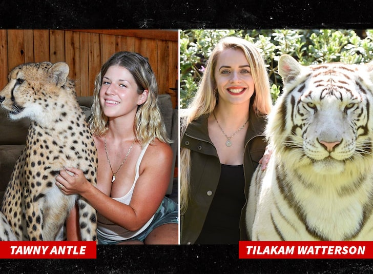 Doc Antle's daughters pictured next to tigers