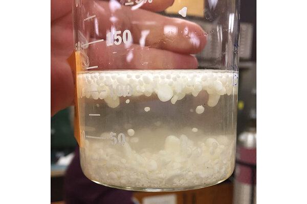 The result of mixing ground mussel shells with acetic acid - a soft calcite material starts floating to the surface of the solution.