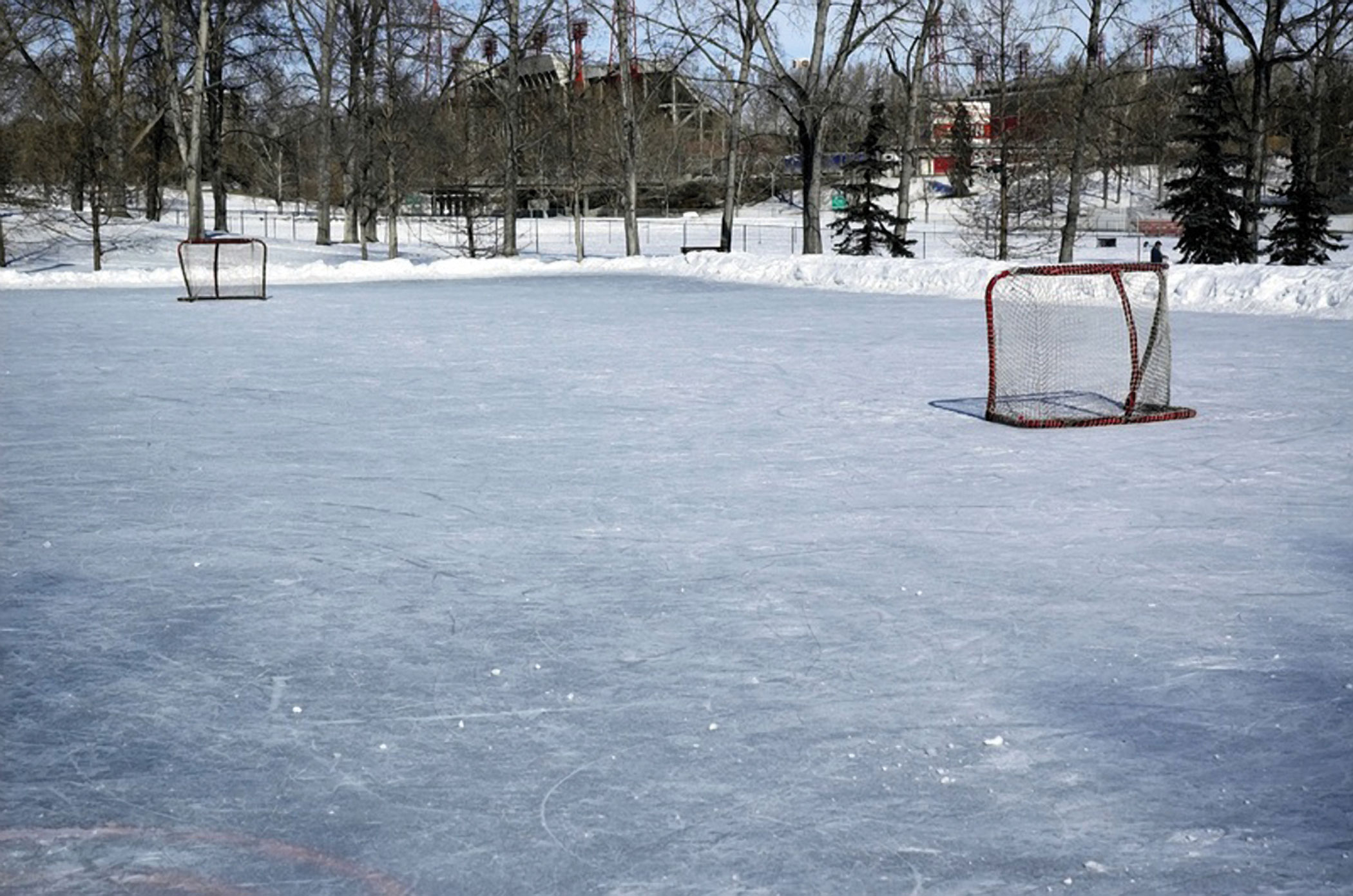the ice rink Weylon Heiser built for his sons